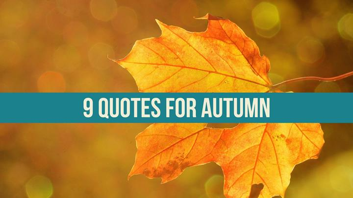 9 Quotes For Autumn Writers Write