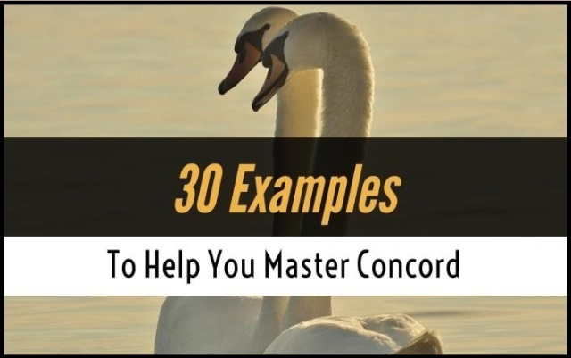 30 Examples To Help You Master Concord
