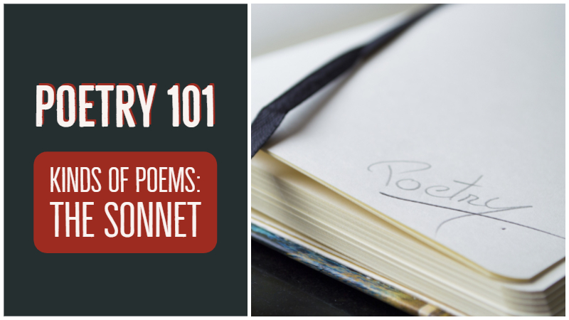 Poetry 101: Kinds Of Poems - The Sonnet