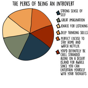 The Perks Of Being An Introvert   Writers Write