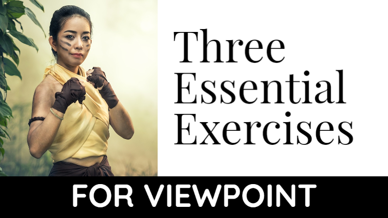 3 Essential Exercises For Viewpoint
