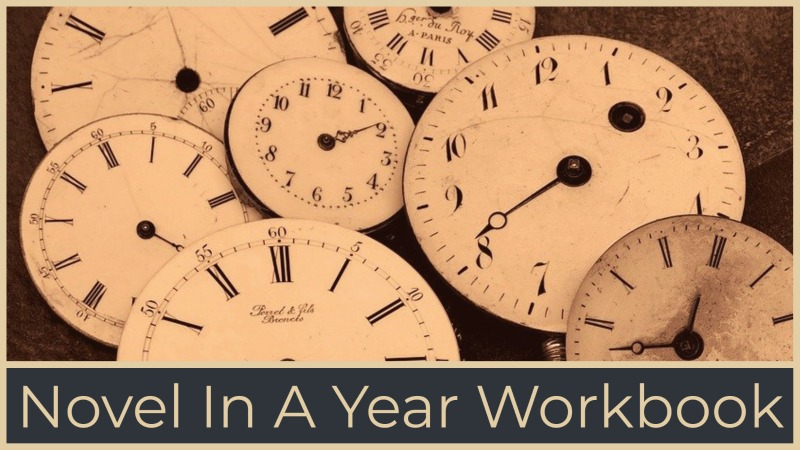 Write Your Novel In A Year Workbook
